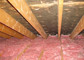 Attic Mold Remediation Process and Cost