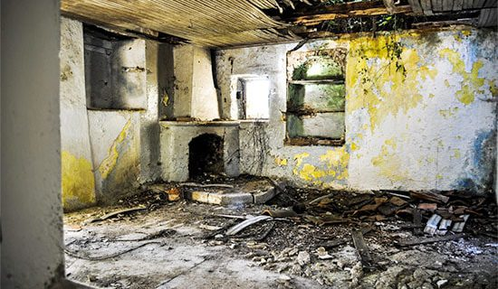 Black Mold Pictures in your house