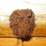 Why You Should be Aware of Brown Mold