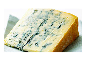 Green Mold on Cheese