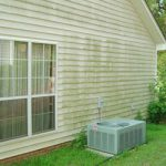 How to Remove Green Mold on Siding