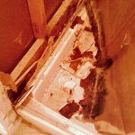 How to Deal with Red Mold in Shower