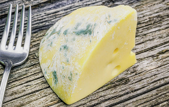 Eating green mold on cheese