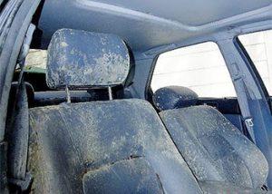 Green Mold in Car