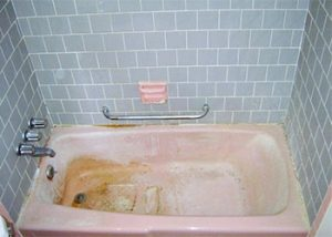 Pink Mold On Wood The Danger And Removal Solution Mold Cleans