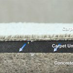 CARPET MOLD: Why It Happens & How to Stop It
