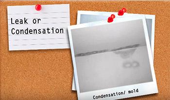 Leak or condensation