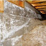 5 Tips to Prevent Mold in Beachfront & Oceanside Homes