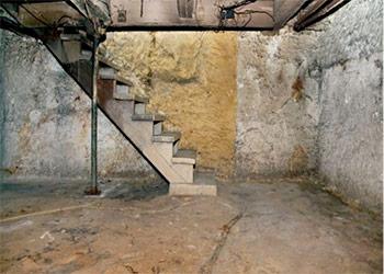 Basement loundry room mold