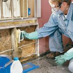 How to Prevent Bathroom Mould and Mildew